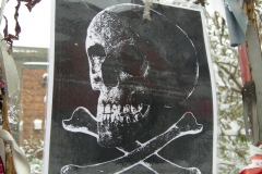 Skull of a Young Woman, Crossbones. Poster (c) Zanna. Poem (c) John Constable. Photo (c) Katy Nicholls