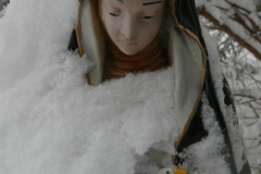 Red Cross Mary guards her Goose in the snow. Photo (c) Katy Nicholls